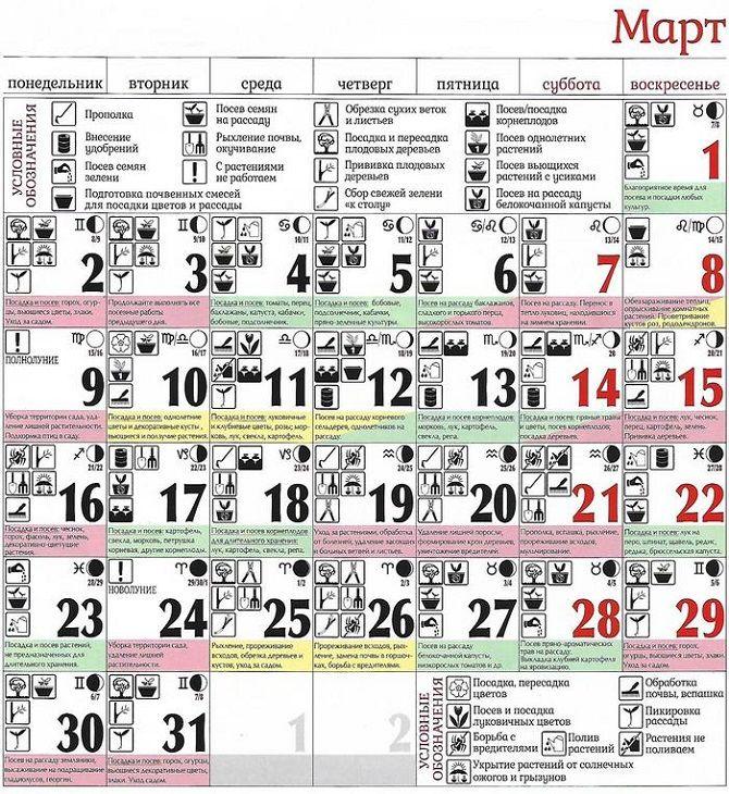 Посевной календарь на март 2020 года