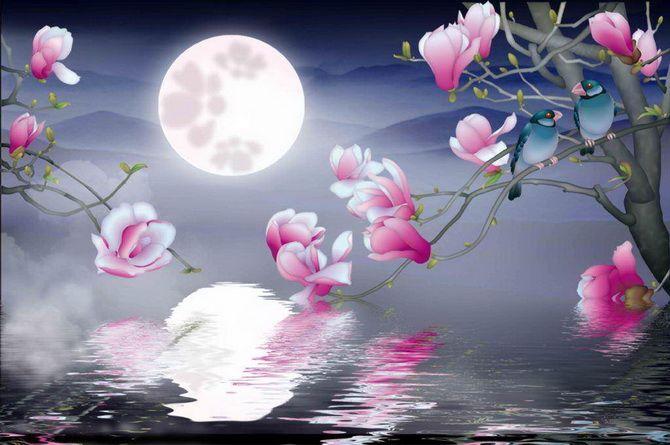 цветы и луна