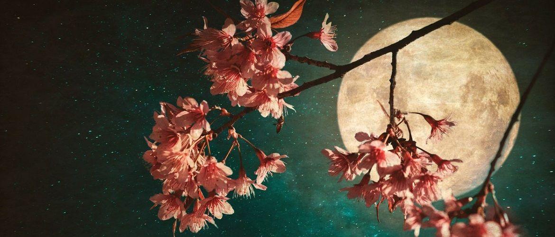 Каким будет Полнолуние в апреле 2020: лунный календарь, благоприятные дни