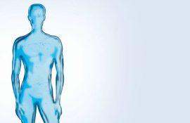 7 unbekannte Teile des menschlichen Körpers, von denen wir nichts wissen