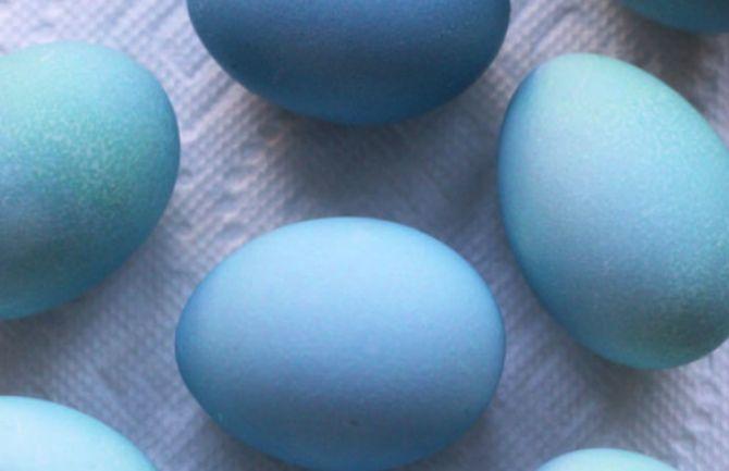 красят ли яйца