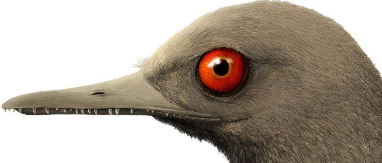Обнаружен самый маленький динозавр. Вы не поверите – он был меньше птички колибри!