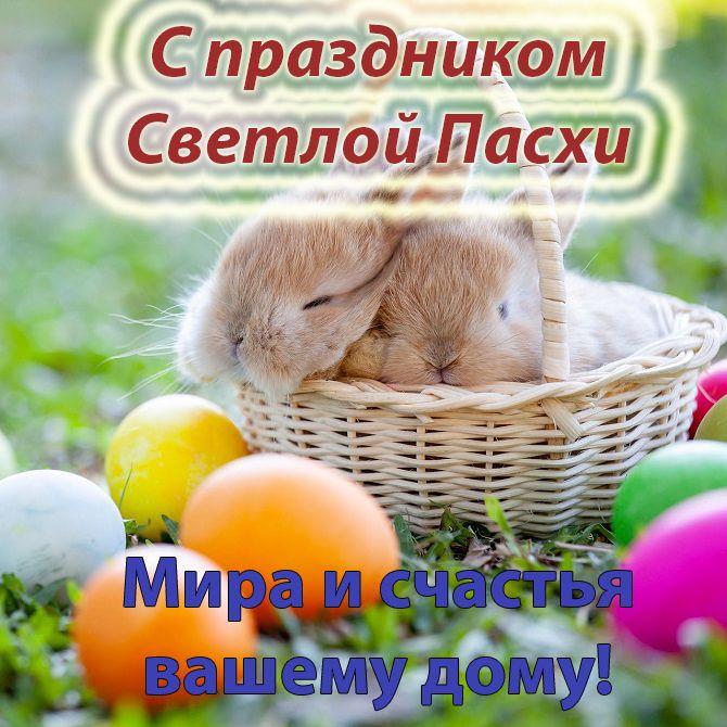 Зі святом Великодня
