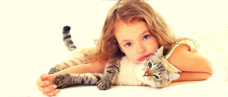 10 самых добрых и ласковых пород кошек
