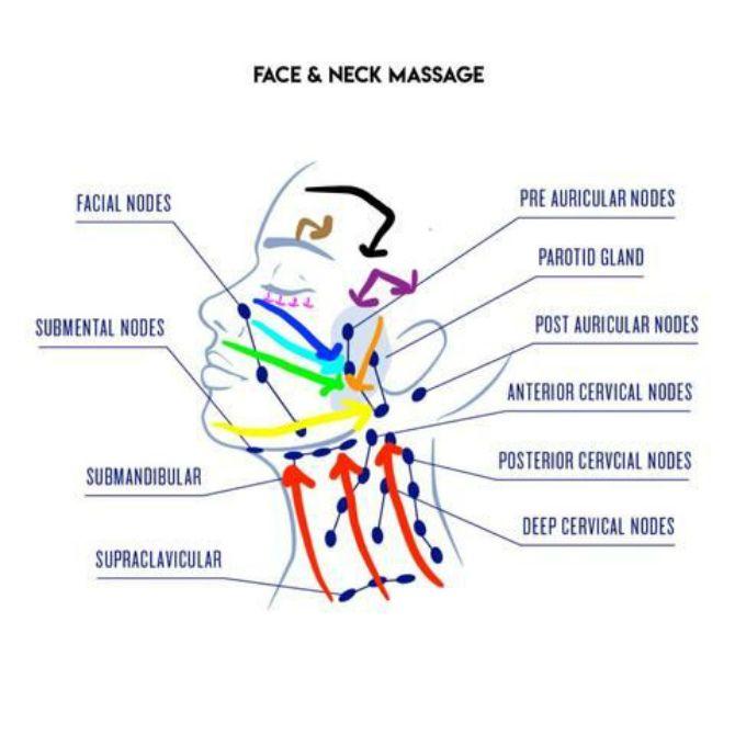 Як правильно робити лімфодренаж обличчя