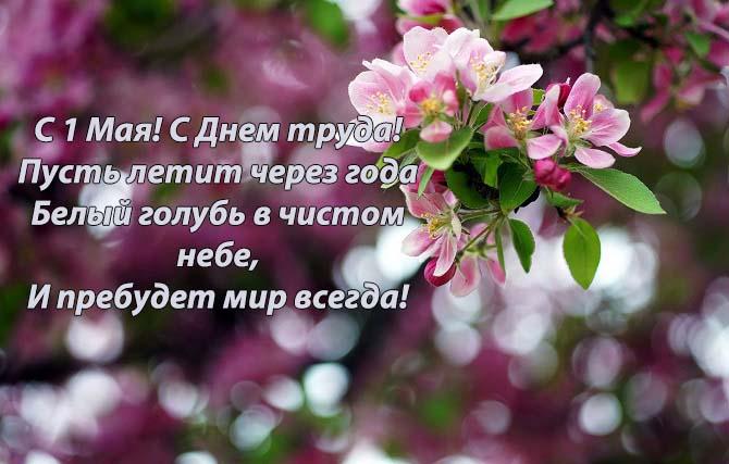 привітання зі святом весни