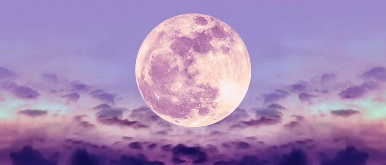 Суничний Місяць: що робити в Повню в червні 2020