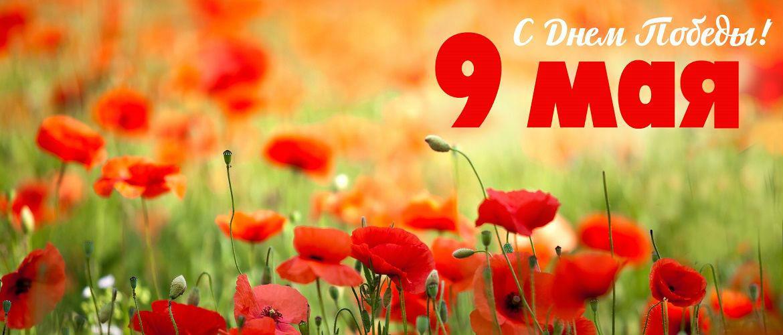 Поздравления с 9 мая: открытки и картинки к празднику Победы