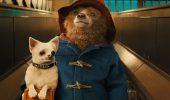 Добрі комедії про тварин, від яких ви будете в захваті