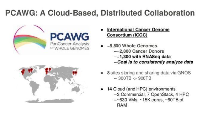 схема PCAWG