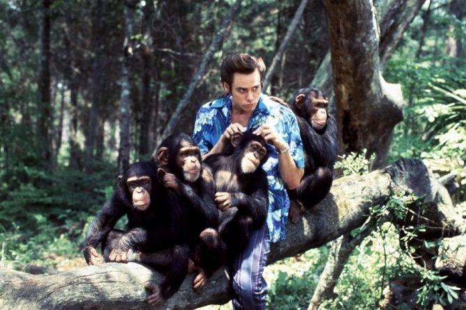 Эйс Вентура 2: когда зовет природа, 1995