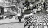 Вирус «испанка»: неизданная история самого страшного вируса