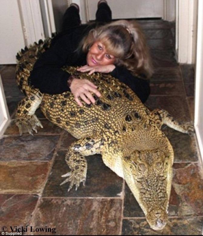 гигантская рептилия
