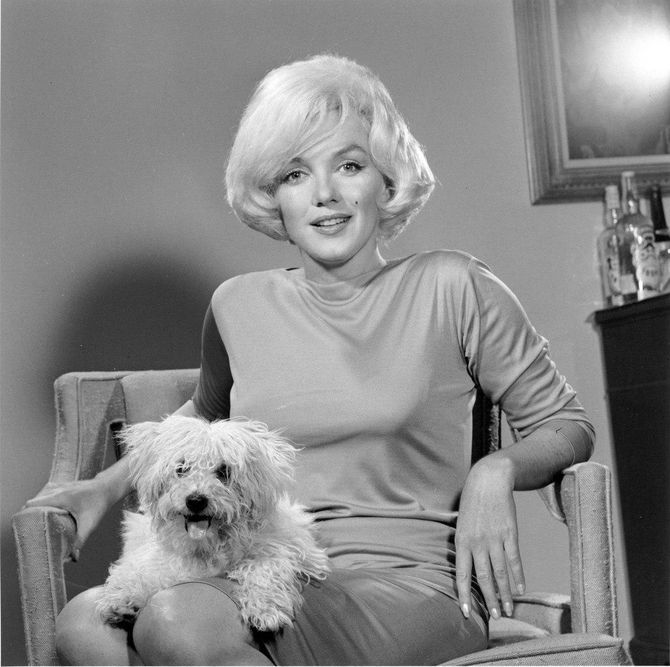 Мерилін Монро  с собачкою