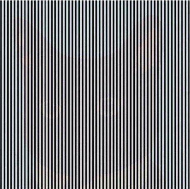 чорно-білі смужки