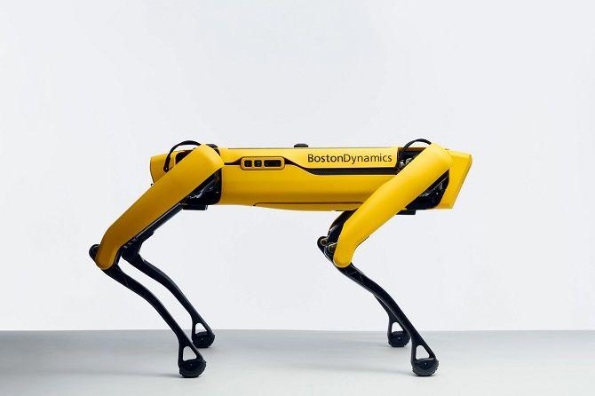 spot робопес Boston Dynamics