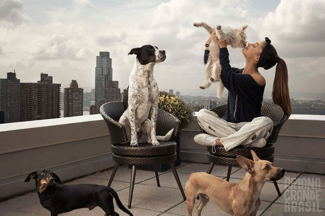 Ариана Гранде и собаки