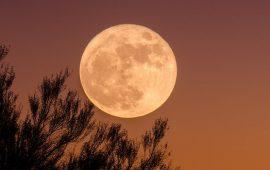 Осетровий Місяць: коли буде Повня у серпні 2020 року?