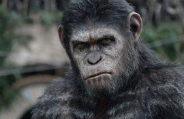 Неймовірні фільми про мавп, від перегляду яких неможливо відірватися