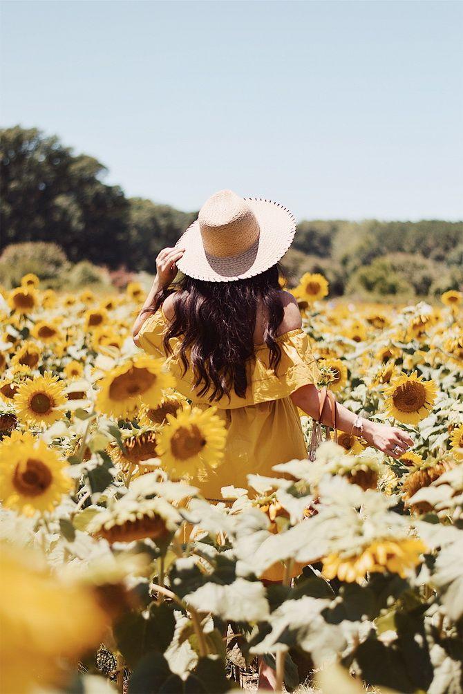 Місячний календар стрижок на серпень 2020: сприятливі дні для краси та здоров'я волосся 2