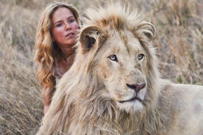 Найцікавіші фільми про левів, від яких неможливо відірватися 8