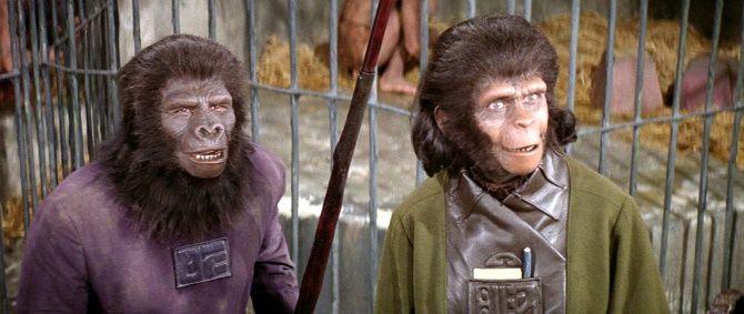 Неймовірні фільми про мавп, від перегляду яких неможливо відірватися 6