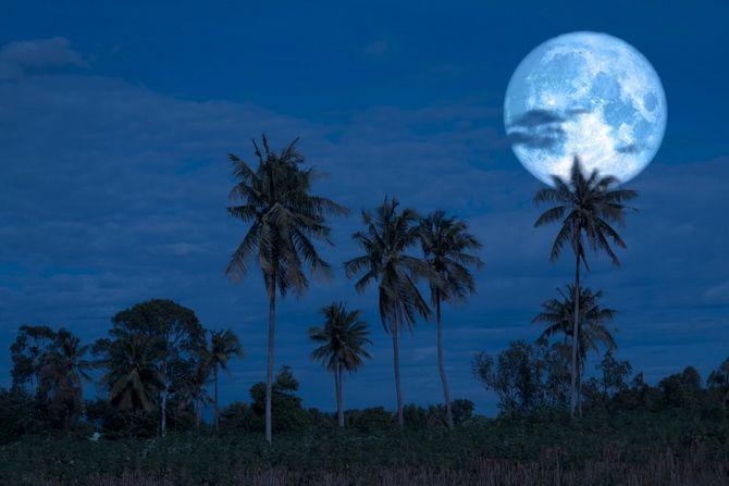 Осетровий Місяць: коли буде Повня у серпні 2020 року? 7