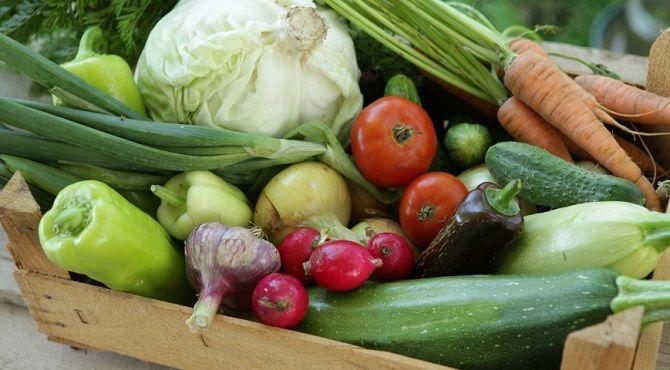 4 ефективних експрес-дієти на літо: худнемо швидко і правильно 22