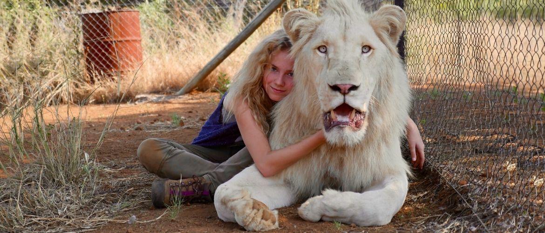 Найцікавіші фільми про левів, від яких неможливо відірватися