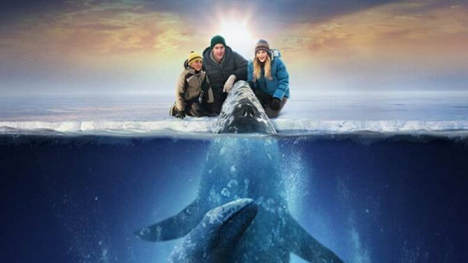 Самые красивые и познавательные фильмы про дельфинов 5