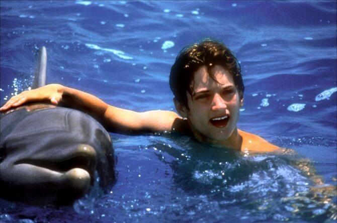 Найкрасивіші і пізнавальні фільми про дельфінів 6