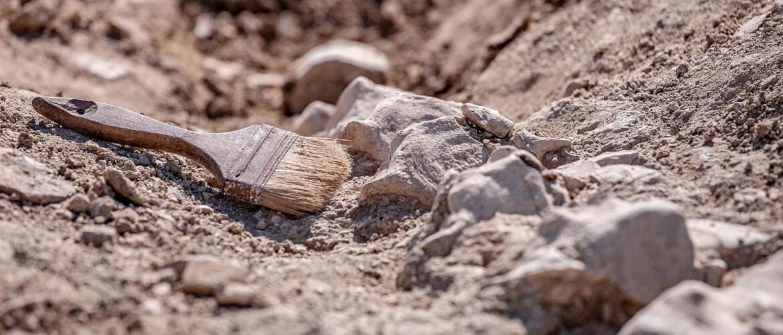 Оригинальные поздравления с Днем археолога