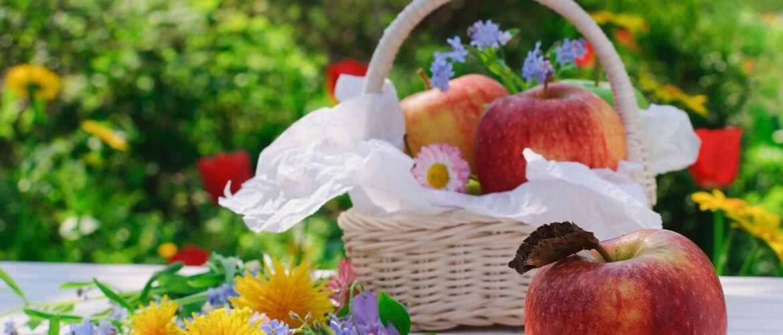 Очень красивые поздравления с Яблочным Спасом