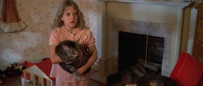 Топ-10 найкращих фільмів про кішок для сімейного перегляду 5