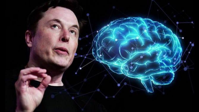 Илон Маск чипировал свинью и рассказал, как Neuralink поможет лечить нейронные заболевания 4