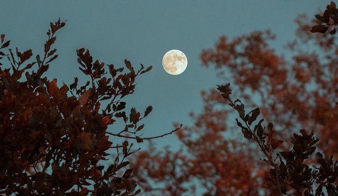 Кукурузная Луна: что готовит нам Полнолуние в сентябре 2020 года 6