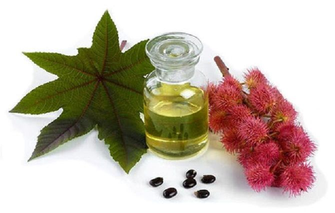 Рицинова олія: гарне волосся і молодість шкіри 2