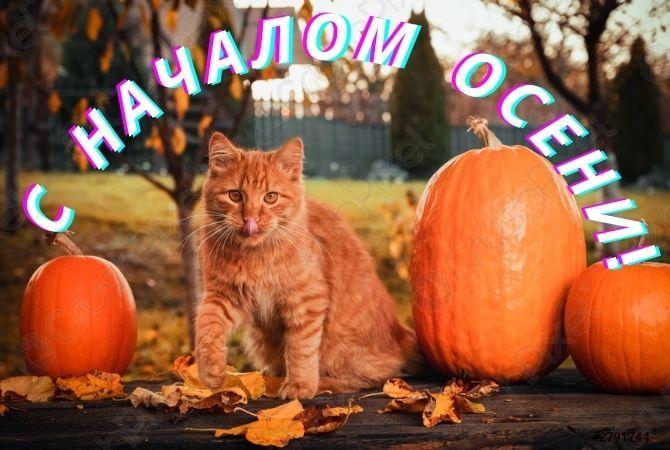 Первый день осени – красочные поздравления в стихах, открытках и прозе 4