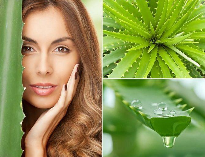 Рецепти ефективних зволожувальних масок: як зробити шкіру обличчя ідеальною 15
