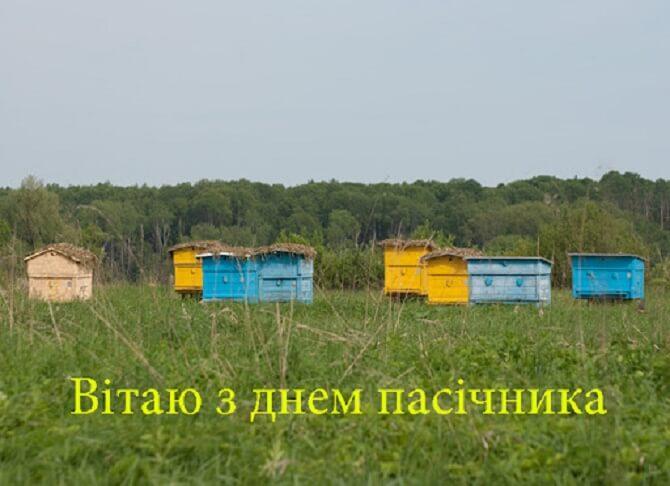 Привітання з Днем пасічника України 2020
