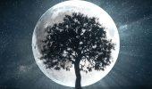«Охотничье» Полнолуние 2 октября 2020: что нам готовит полный Месяц этой осенью?
