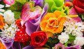 День краси – гарні привітання у віршах, листівках і прозі