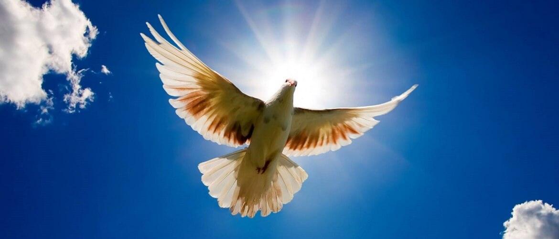 Міжнародний день миру – красиві привітання