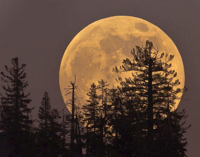 «Мисливська» Повня 2 жовтня 2020: що нам готує повний Місяць цієї осені? 5