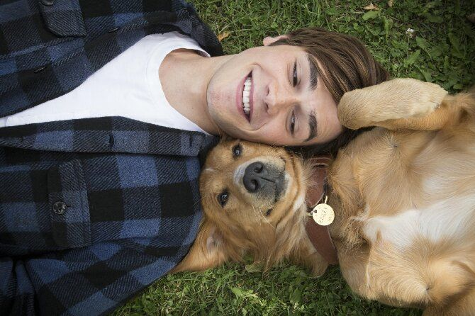 Кращі сімейні фільми для перегляду з дітьми: рейтинг від Joy-pup 5