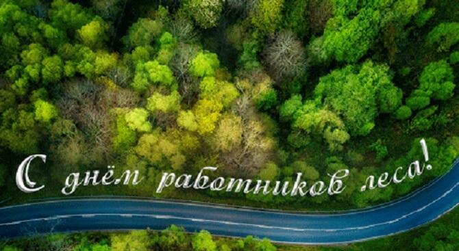 Поздравления с Днем работников леса  картинки