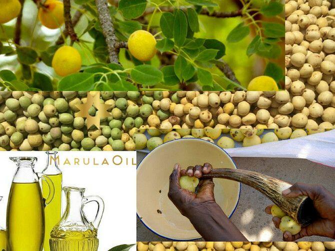 Масло марулы – африканский секрет красоты для лица, тела и волос 2