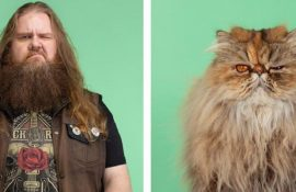 А у вас так само? Фотограф зобразив, наскільки схожі коти та їх господарі