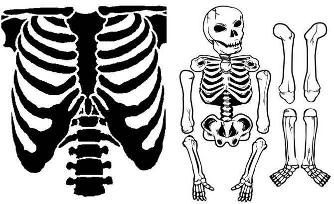 Show the bones: DIY Halloween skeleton costume 4