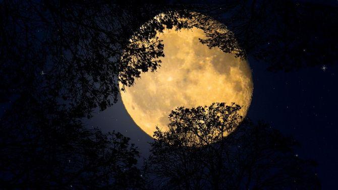 Голубая Луна: чего ожидать от Полнолуния 31 октября 2020 года? 4